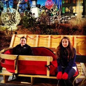 LL Bean sled